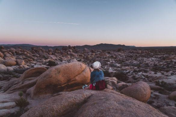 Joshua Treen kansallispuisto ja Mojaven aavikko